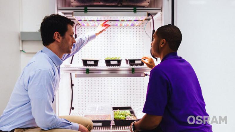 PHYTOFY® RL es la luminaria LED configurable de OSRAM para optimizar el crecimiento sostenible de plantas